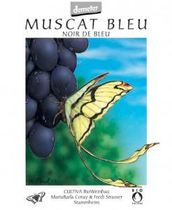 Wein Strasser muscat
